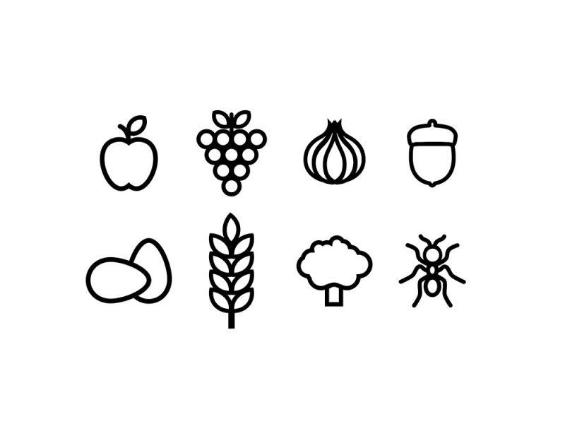 Historia del comer. La evolución de la alimentación en iconos