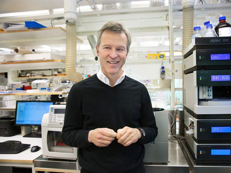 Nuevos materiales: investigadores sueco desarrollan una madera transparente