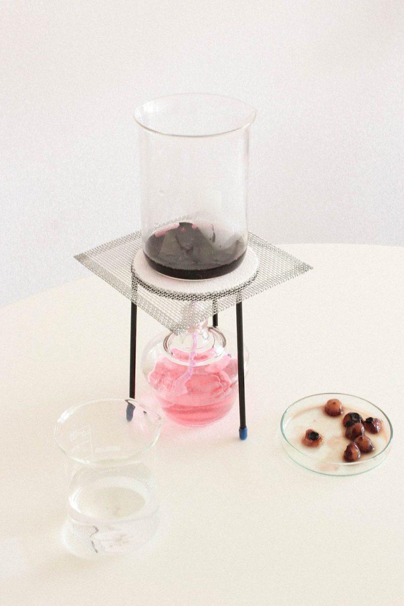 Nuevos materiales: Desintegra.me, el bioplástico de Margarita Talep