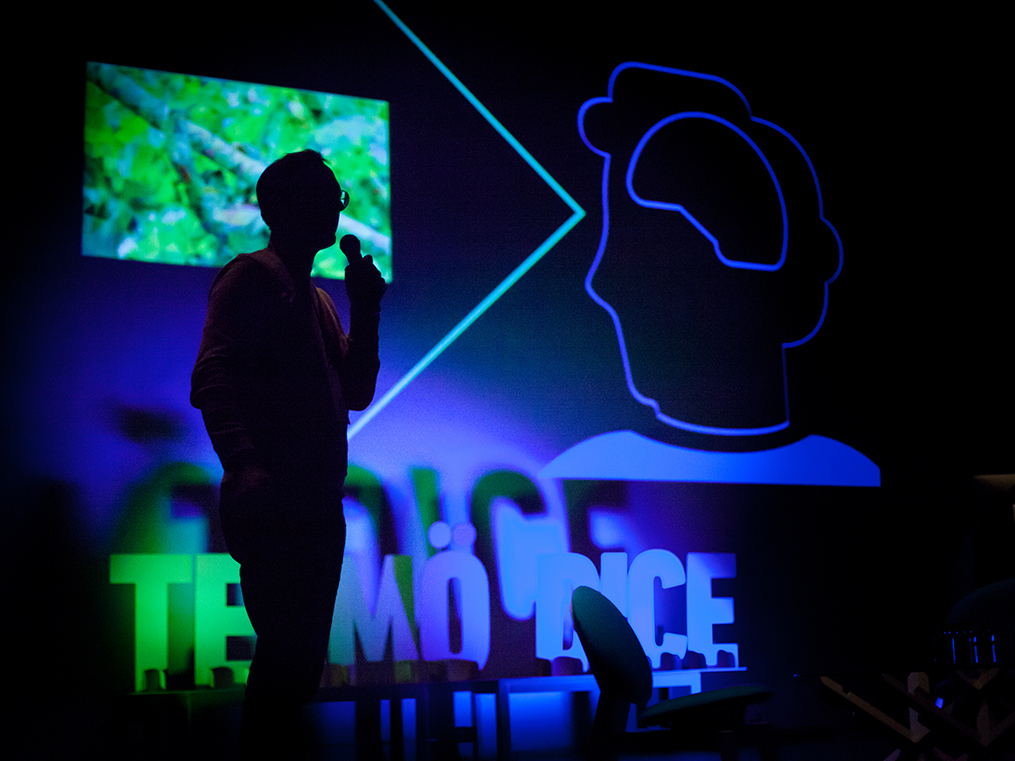 El festival de Diseño y Cultura Visual Telmö Dice celebra su octava edición