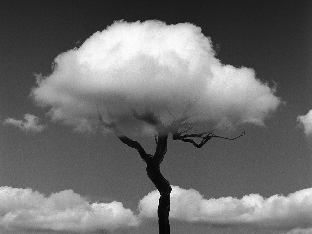 La naturaleza de las cosas, la fotografía de Chema Madoz