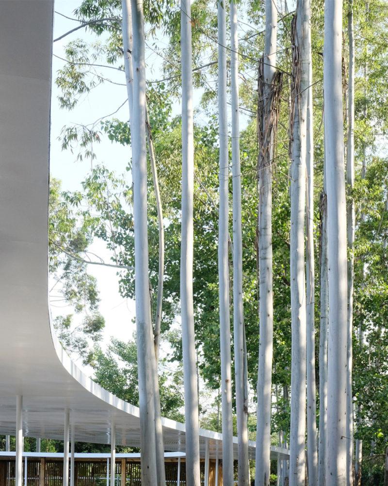 El disruptor restaurante outdoor de Muda. Diseño, naturaleza y gastronomía china
