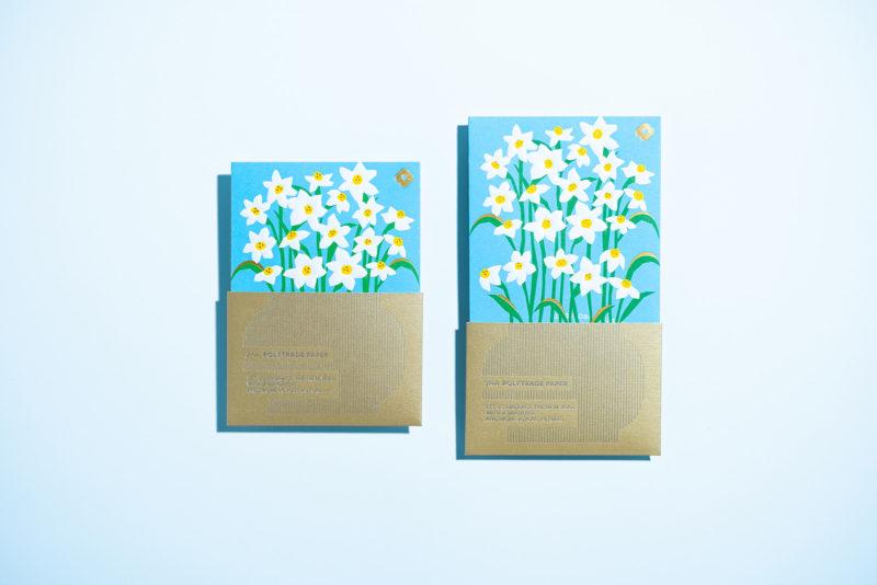 Joy of Floral, la papelera floral de WMW. Ilustración y packaging desde Honk Kong