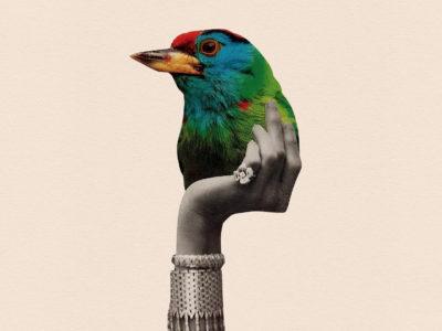El collage análogo digital de Adam Hale. Ilustración de tijeras